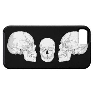 Skull Trio iPhone 5 Case