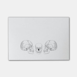Skull Trio Post-it® Notes