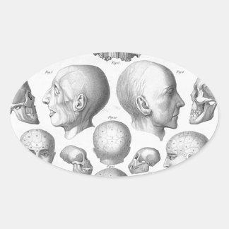Skull Types Oval Sticker