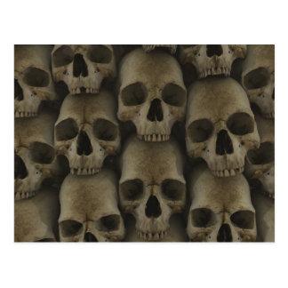 Skull Wall Postcard