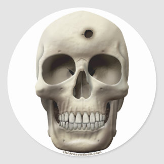 Skull with Bullet Hole Stickers