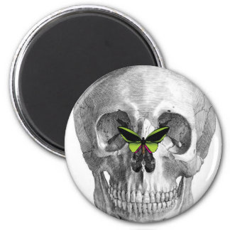 SKULL WITH BUTTERFLY ON NOSE PRINT MAGNET