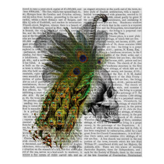 Skull With Feather Headress Poster