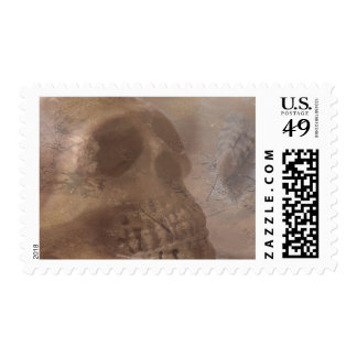 Skull with moth stamp