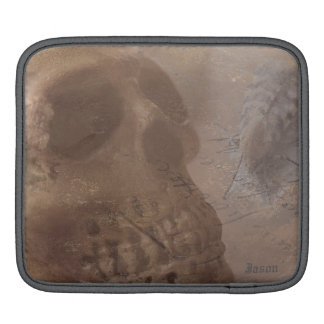 Skull with striped moth iPad sleeves