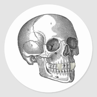 SKULL WITH VAMPIRE FANGS CLASSIC ROUND STICKER