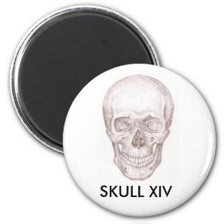 Skull XIV Magnet