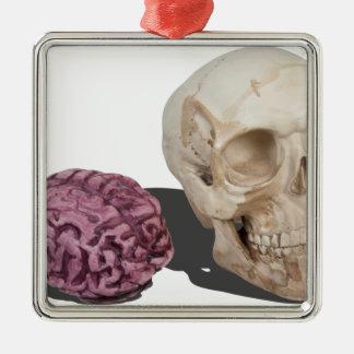 SkullandBrains103013.png Metal Ornament