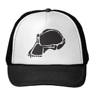 skullcap gorras