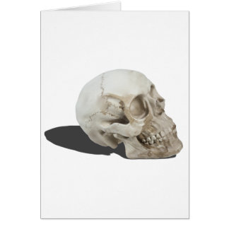 SkullCranialLines051213.png Greeting Card