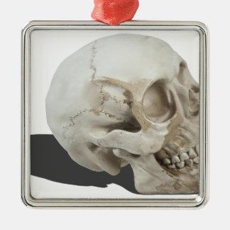 SkullCranialLines051213.png Metal Ornament