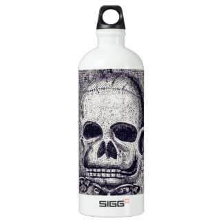 Skulldugery Aluminum Water Bottle