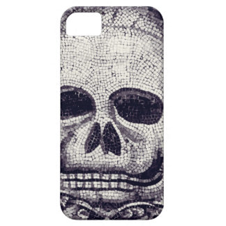 Skulldugery iPhone SE/5/5s Case