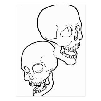 Skulls-Duo Postcard