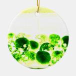 Skulls Green & Yellow Christmas Tree Ornament