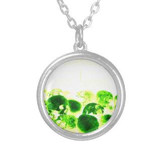 Skulls Green Yellow Custom Necklace