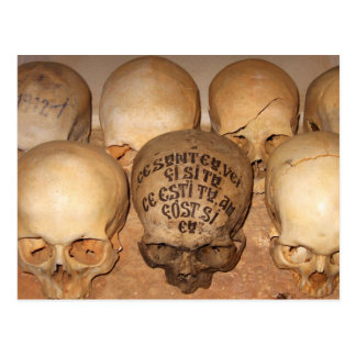 Skulls in an Orthodox Ossuary Postcard