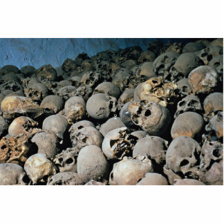 Skulls in Mount Sinai, Middle East Cutout