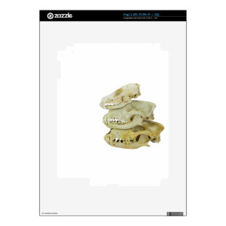 Skulls of fox and dogs on top of each other iPad 2 decal