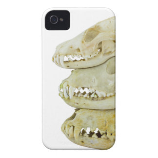 Skulls of fox and dogs on top of each other iPhone 4 Case-Mate case
