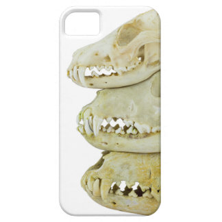 Skulls of fox and dogs on top of each other iPhone SE/5/5s case