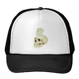 Skulls of human and ape on top trucker hat