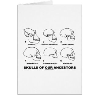 Skulls Of Our Ancestors (Six Skulls Evolution) Greeting Card