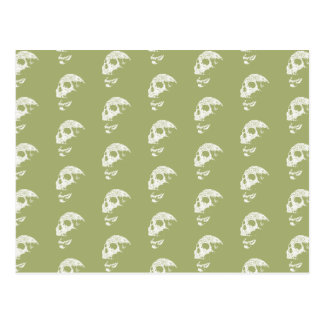 Skulls Pattern in Khaki Green and White. Postcard