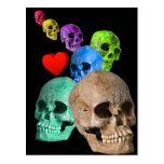 Skulls! Postcard
