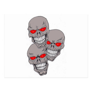 Skulls Postcard