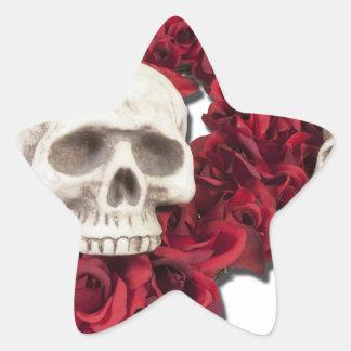 SkullsWithHeartRoses100712 copy.png Pegatina En Forma De Estrella