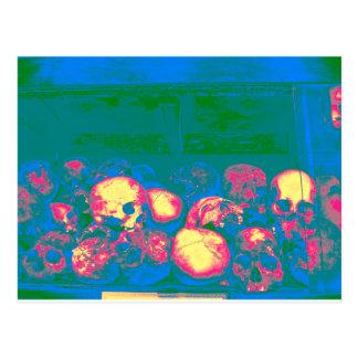 skullsx multi postcard