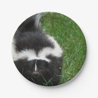 skunk-2 paper plate