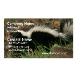 Skunk Behavior Business Card