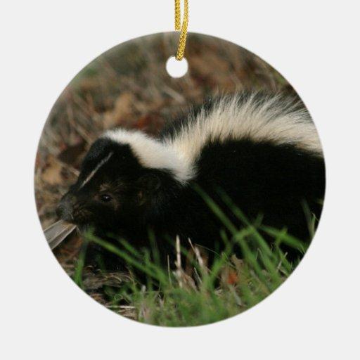 Skunk Behavior Ornament