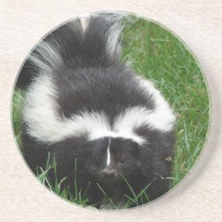 Skunk Coasters