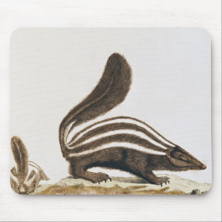 Skunk, from 'Histoire Naturelle' by Mouse Pad