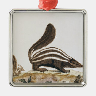 Skunk, from 'Histoire Naturelle' by Square Metal Christmas Ornament