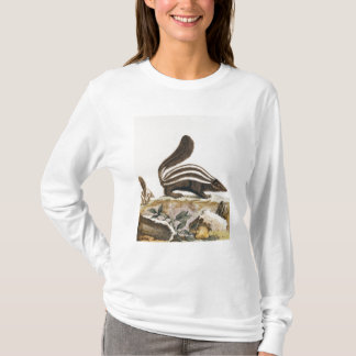 Skunk, from 'Histoire Naturelle' by T-Shirt