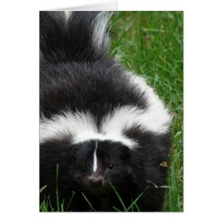 Skunk Greeting Card