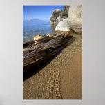 Skunk Harbor Driftwood Poster