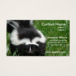 Skunk Photo Business Card