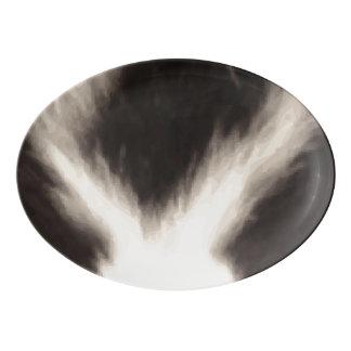 Skunk Stripe Print Pattern Background Porcelain Serving Platter