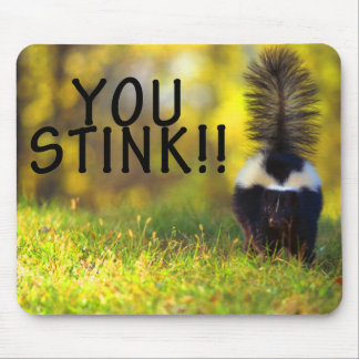 Skunk You Stink Mousepads