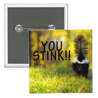 Skunk You Stink Pinback Button