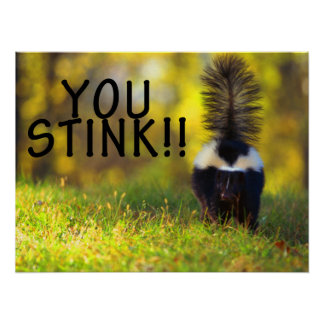 Skunk You Stink Poster