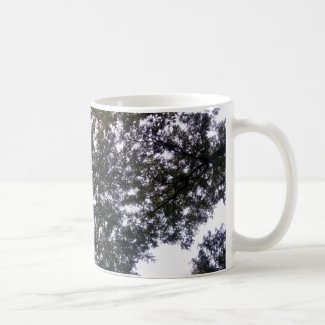 Sky and Tree Branches on Coffee Mug