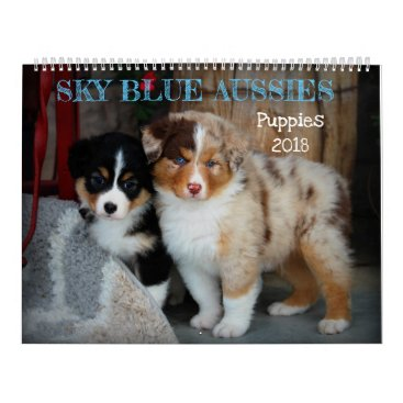 Valentines Themed Sky Blue Aussies 2018 Puppy Calendar