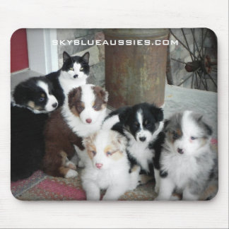 Sky Blue Aussies Puppies Mouse Pad