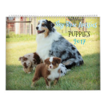 Sky Blue Aussies PUPPY Calendar 2017